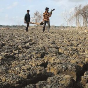 10 districts in J'khand declared drought-hit