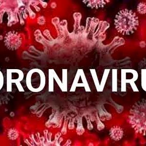 Breaking News Alert Coronavirus May Be Related to Meat-Eating, Sources Warn