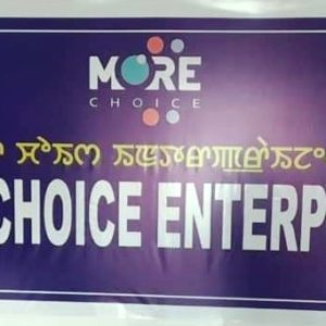 MORE CHOICE INVESTMENT