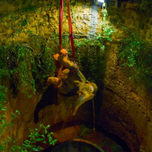 Wild Elephant That Fell Into a Well in Southern India Tamil Nadu